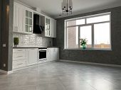 White Kitchen Furniture With Black Countertops. New Modern Kitchen With Hood And Sink. poster