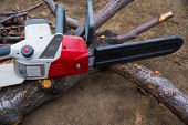 Garden Work. An Electric Chain Saw Is Prepared For Sawing A Fallen Tree. poster