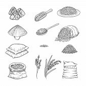 Doodle Rice. Agricultural Nature Collection Of Rice Sacks Grains Vector Hand Drawn Set. Illustration poster
