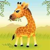 Baby Animal Collection: Giraffe poster