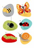 stock photo of caterpillar  - Cartoon bugs and insect illustrations including bee - JPG