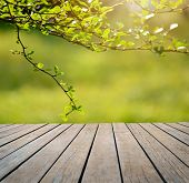 stock photo of floor covering  - Spring or summer background Empty table for photomontage - JPG