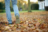 stock photo of walking away  - Walking away in boots on brown autumn leaves - JPG
