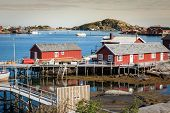 image of lofoten  - Typical Norwegian fishing village with traditional red rorbu huts Reine Lofoten Islands Norway - JPG