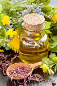 stock photo of celandine  - glass bottle of essential oil and healing herbs herbal medicine - JPG