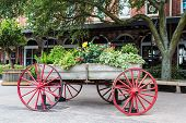 foto of wagon wheel  - Plants and flowers in an old wood wagon with red wheels - JPG
