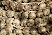 picture of braids  - Polish garlic braided in a braid as background - JPG