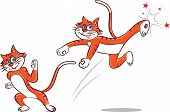 stock photo of karate-do  - Vector illustration of a cat doing karate - JPG