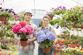 pic of greenhouse  - Portrait of smiling gardeners holding flower pots at greenhouse - JPG