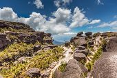 pic of canaima  - The view from the plateau of Roraima on the Grand Sabana  - JPG
