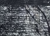 picture of tar  - The surface with the streaks of black tar - JPG