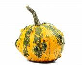 stock photo of queer  - Orange pumpkin isolated on pure white background - JPG