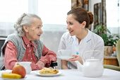stock photo of retirement age  - Senior woman eats lunch at retirement home - JPG