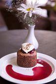foto of ice-cake  - Dessert with chocolate sponge cake cherry and vanilla ice cream - JPG