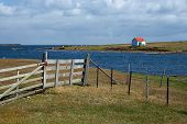 picture of falklands  - Farm buildings on the coast of Bleaker Island in the Falkland Islands - JPG