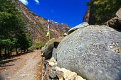 stock photo of cho-cho  - view of the hiking trails in Nepal, Hymalaya. Trek around Annapurna Mount ** Note: Soft Focus at 100%, best at smaller sizes - JPG