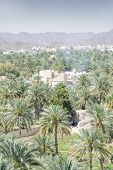 foto of oman  - View from the fort to buildings and palms of the town Nizwa Oman - JPG