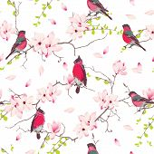 picture of japanese magnolia  - Red bullfinches on the magnolia tree vector seamless print - JPG