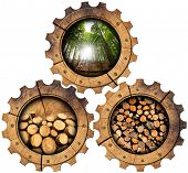 foto of cutting trees  - Three wooden gears with green forest trunks of trees cut and stacked dry cut firewood logs in a pile - JPG