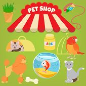 picture of poodle  - Cat Poodle Parrot Gold Fish and Accessories of Pet Shop - JPG