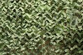 picture of camouflage  - the military camouflage net  green disguise background - JPG