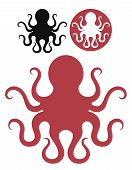 picture of octopus  - Isolated octopuses on white background - JPG
