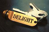 image of exaltation  - Delight Concept - JPG