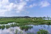 picture of wetland  - Gyeongpo lake park with the restored wetlands reflecting on the small river running nearby the lake - JPG