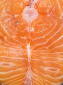 image of salmon steak  - Salmon Steak  - JPG