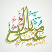 picture of eid festival celebration  - Shiny Arabic Islamic calligraphy of text Eid Mubarak for famous festival of Muslim community - JPG