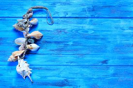 stock photo of conch  - an ornament made from seashells and conchs on a blue rustic wooden surface - JPG