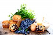 Blueberries And Muffins