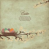 image of easter basket eggs  - Vintage easter card with nest of easter eggs - JPG