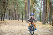 Happy Kid Boy Of 3 Or 5 Years Having Fun In Autumn Forest With A Bicycle On Beautiful Fall Day. Acti poster