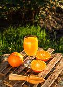 Citrus Juice. Mandarin Juice. Refreshing Orange Juice poster