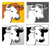 foto of cow head  - 4 variations of Beef Head Illustration in vectors - JPG