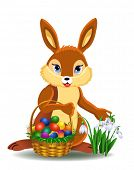 pic of easter bunnies  - easter bunny - JPG