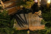 Open Book With Magic Spells, Black Candles And With Herbs In Candlelight poster