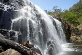 stock photo of mckenzie  - McKenzie Falls - JPG