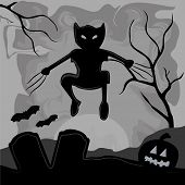 image of wolverine  - a wolverine cat coming out from the shadows to celebrate halloween - JPG