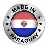 Made In Paraguay Silver Badge