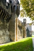 stock photo of avignon  - Part of ancient stone City Wall and flower garden in front  - JPG
