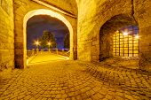 pic of serbia  - Medieval gate at Belgrade fortress - JPG