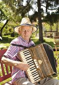 image of accordion  - Old man enjoying playing accordion in his garden on sunny day - JPG