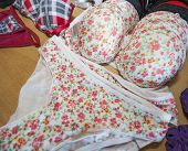 pic of womens panties  - Display of womens lingerie clothing on wooden shelf in clothes shop - JPG