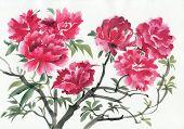 picture of azalea  - A branch of dark red azalea tree - JPG