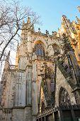 Постер, плакат: Cathedral In The Dutch City Of Den Bosch Netherlands