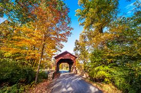 stock photo of maryland  - Covered bridge in Western Maryland during Autumn - JPG
