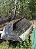 Old Wood Boat At The Summer Forest. poster