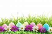 stock photo of easter-eggs  - Row of Easter Eggs with Daisy on Fresh Green Grass - JPG